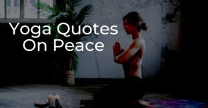 Read more about the article Yoga Quotes On Peace | Inner Peace Quotes