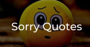 Read more about the article 20+ Best Sorry Quotes | Apology Messages