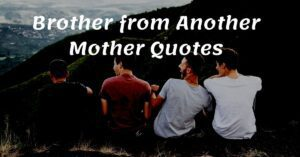 Read more about the article Top 10 Brother from Another Mother Quotes with Images