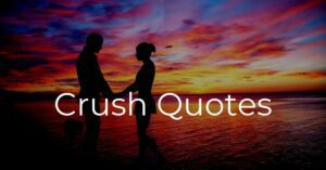 Read more about the article Top 30 Crush Quotes for Your Love | Romantic Quotes