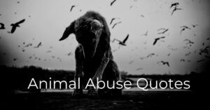 Read more about the article Best Animal Abuse Quotes | Animal Cruelty Sayings