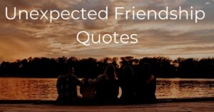 Read more about the article Best 20 Unexpected Friendship Quotes | New Friends