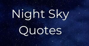 Read more about the article Top 20 Beautiful Night Sky Quotes | Night Star Quotes